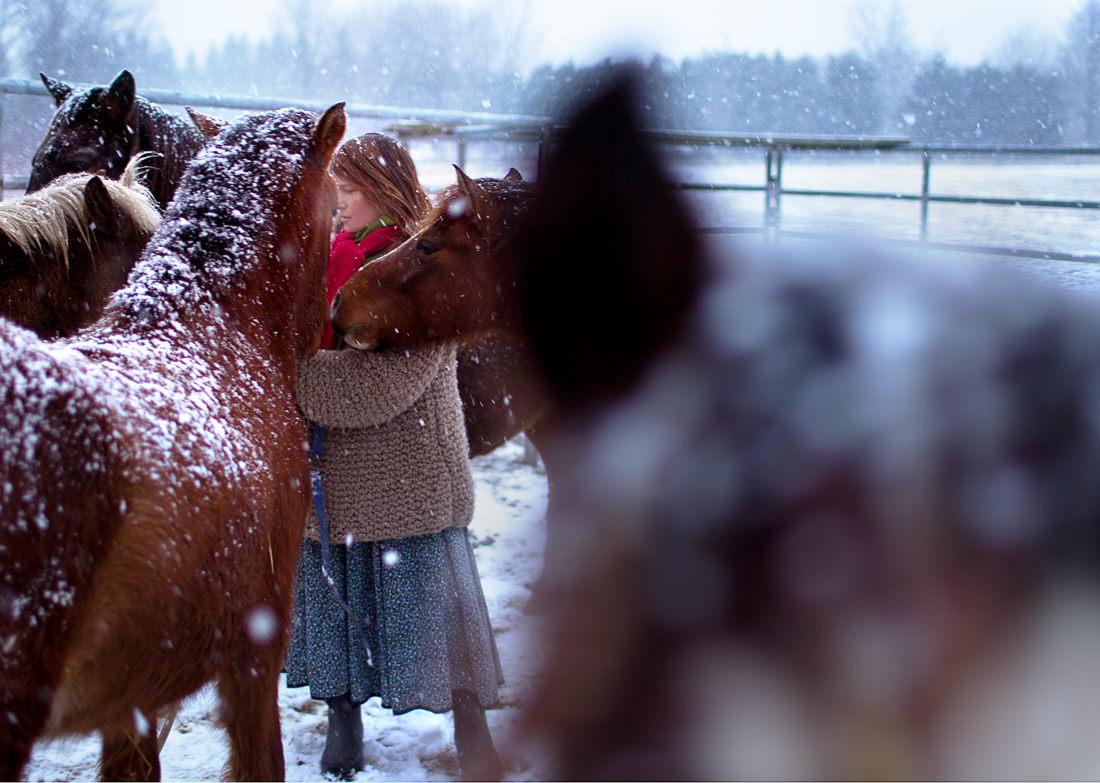 20140120_EmilyKress_Horses_Snow44